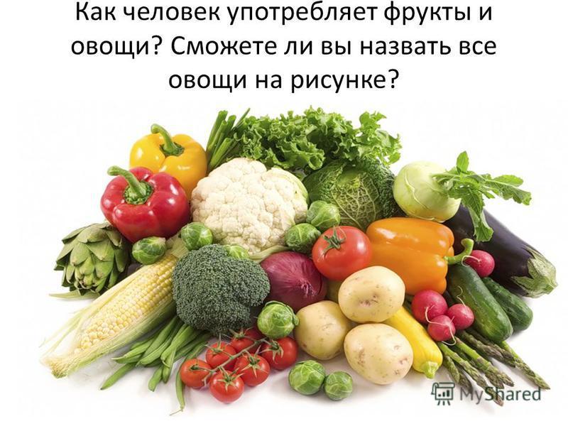 Как человек употребляет фрукты и овощи? Сможете ли вы назвать все овощи на рисунке?