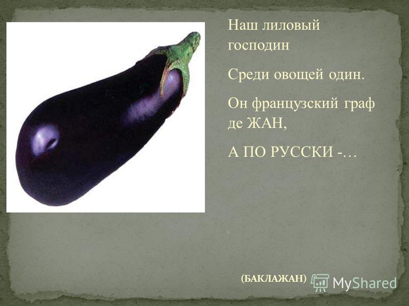 Наш лиловый господин Среди овощей один. Он французский граф де ЖАН, А ПО РУССКИ -… (