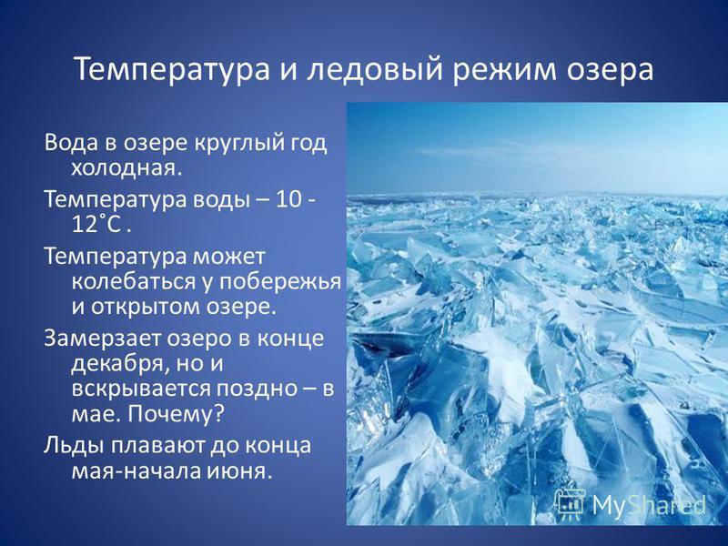 Температура и ледовый режим озера Вода в озере круглый год холодная. Температура воды – 10 - 12˚С. Температура может колебаться у побережья и открытом озере. Замерзает озеро в конце декабря, но и вскрывается поздно – в мае. Почему? Льды плавают до ко