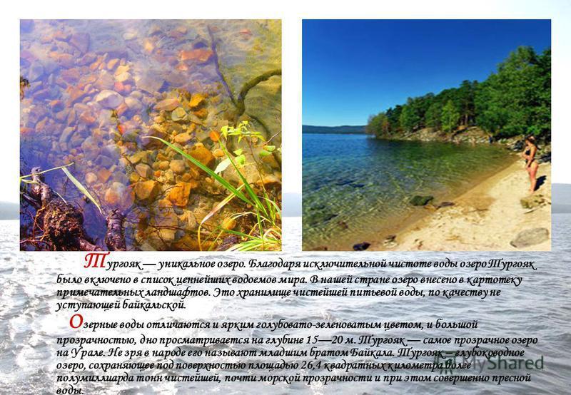 Т ургояк уникальное озеро. Благодаря исключительной чистоте воды озеро Тургояк было включено в список ценнейших водоемов мира. В нашей стране озеро внесено в картотеку примечательных ландшафтов. Это хранилище чистейшей питьевой воды, по качеству не у