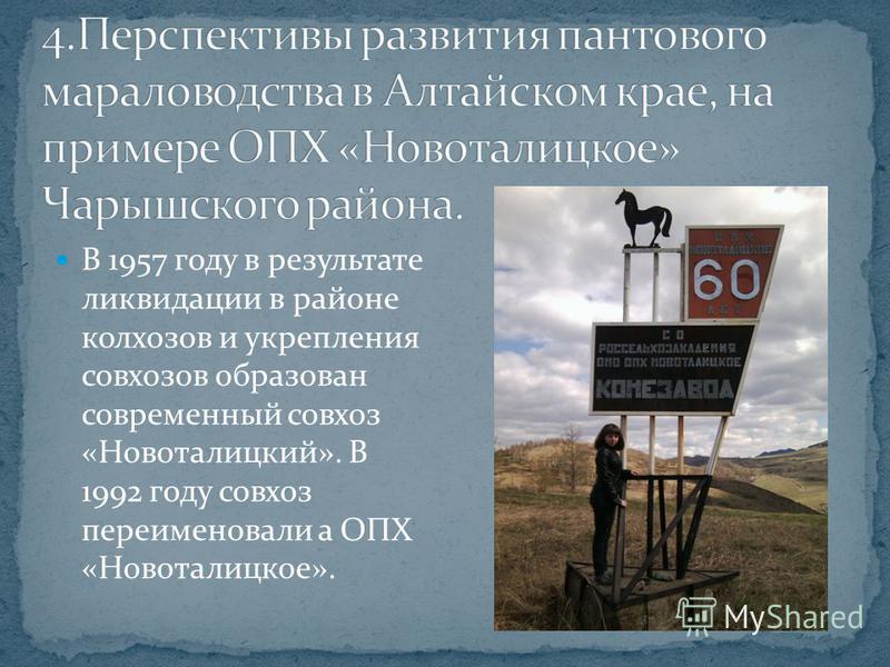 В 1957 году в результате ликвидации в районе колхозов и укрепления совхозов образован современный совхоз «Новоталицкий». В 1992 году совхоз переименовали а ОПХ «Новоталицкое».