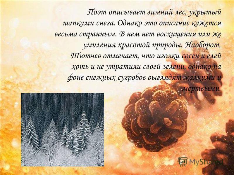 Поэт описывает зимний лес, укрытый шапками снега. Однако это описание кажется весьма странным. В нем нет восхищения или же умиления красотой природы. Наоборот, Тютчев отмечает, что иголки сосен и елей хоть и не утратили своей зелени, однако на фоне с