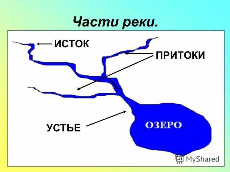 Части реки. ИСТОК ПРИТОКИ УСТЬЕ