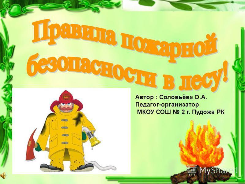 Автор : Соловьёва О.А. Педагог-организатор МКОУ СОШ 2 г. Пудожа РК