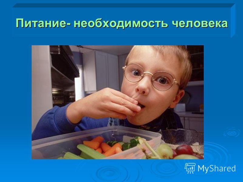 Питание- необходимость человека