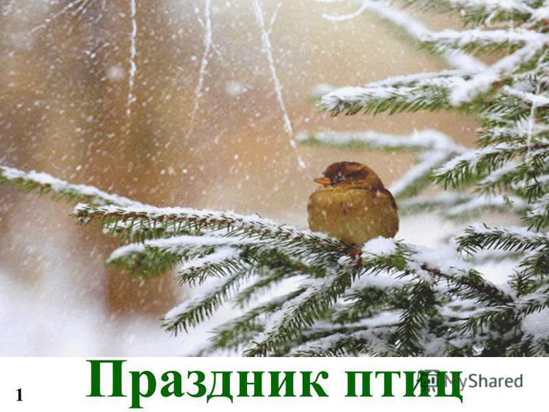 Праздник птиц 1