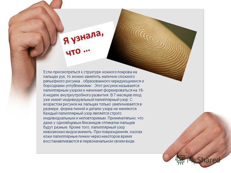 Если присмотреться к структуре кожного покрова на пальцах рук, то можно заметить наличие сложного рельефного рисунка, образованного чередующимися и бороздками-углублениями. Этот рисунок называется папиллярным узором и начинает формироваться на 18- й