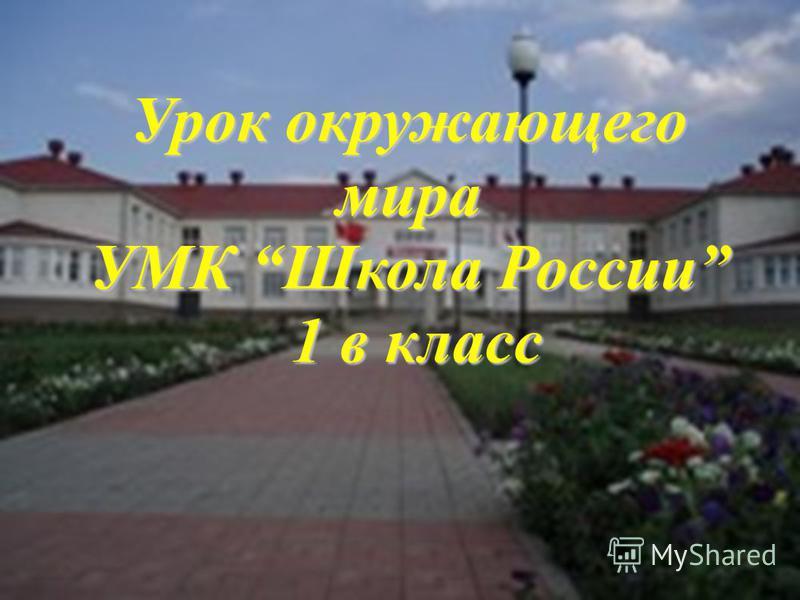 Урок окружающего мира УМК Школа России 1 в класс