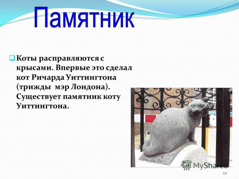 Коты расправляются с крысами. Впервые это сделал кот Ричарда Уиттингтона (трижды мэр Лондона). Существует памятник коту Уиттингтона. 20