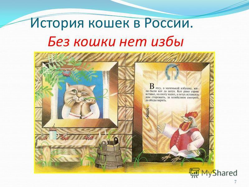 История кошек в России. Без кошки нет избы 7