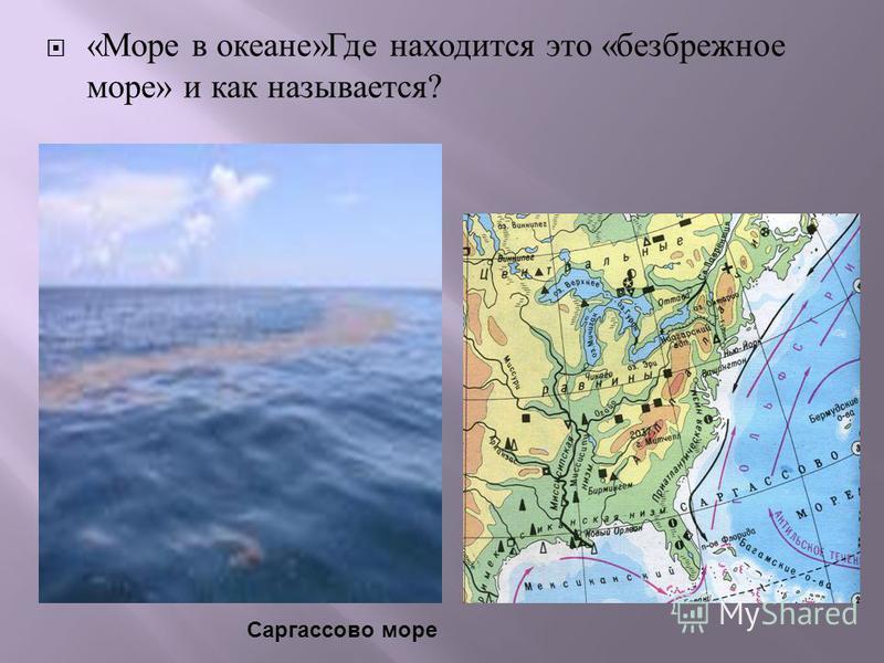 « Море в океане » Где находится это « безбрежное море » и как называется ? Саргассово море