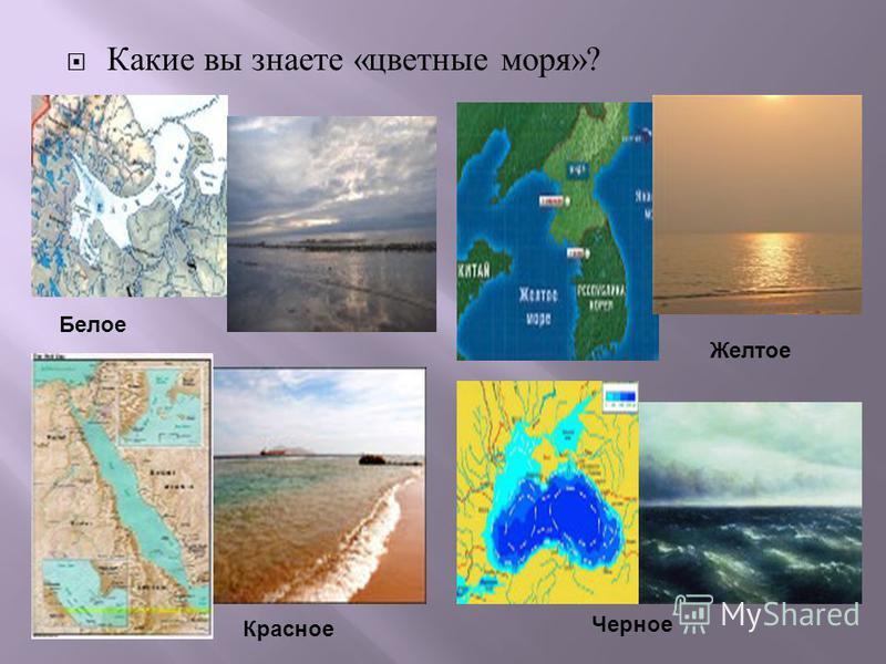 Какие вы знаете « цветные моря »? Белое Красное Желтое Черное