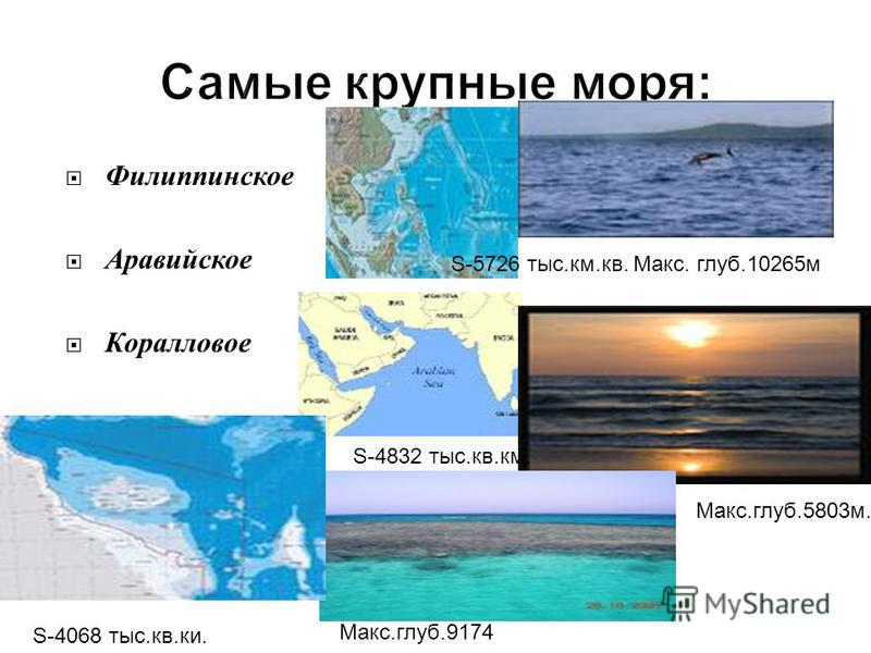 Филиппинское Аравийское Коралловое S-5726 тыс.км.кв. Макс. глуб.10265 м S-4832 тыс.кв.км. Макс.глуб.5803 м. S-4068 тыс.кв.ки. Макс.глуб.9174 м.