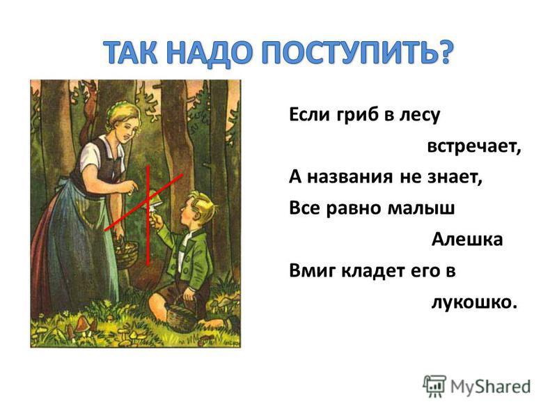 Если гриб в лесу встречает, А названия не знает, Все равно малыш Алешка Вмиг кладет его в лукошко.