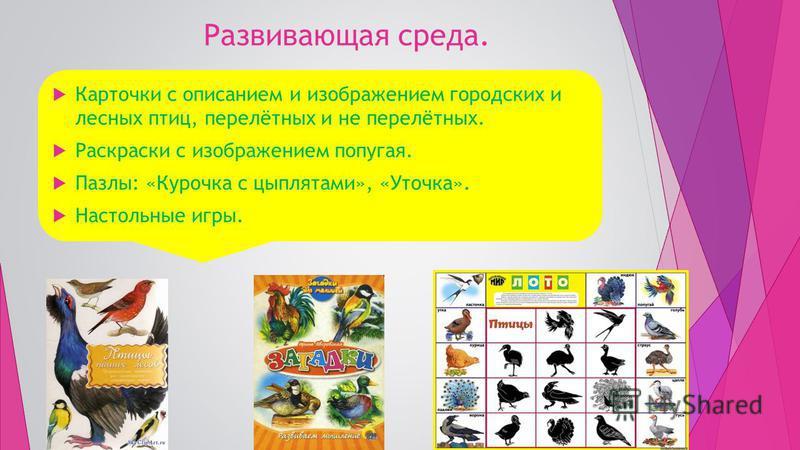 Развивающая среда. Карточки с описанием и изображением городских и лесных птиц, перелётных и не перелётных. Раскраски с изображением попугая. Пазлы: «Курочка с цыплятами», «Уточка». Настольные игры.