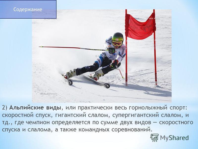 2) Альпийские виды, или практически весь горнолыжный спорт: скоростной спуск, гигантский слалом, супер гигантский слалом, и тд., где чемпион определяется по сумме двух видов скоростного спуска и слалома, а также командных соревнований.