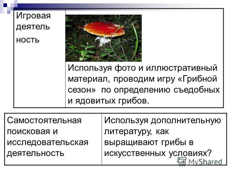 Игровая деятельность Используя фото и иллюстративный материал, проводим игру «Грибной сезон» по определению съедобных и ядовитых грибов. Самостоятельная поисковая и исследовательская деятельность Используя дополнительную литературу, как выращивают гр