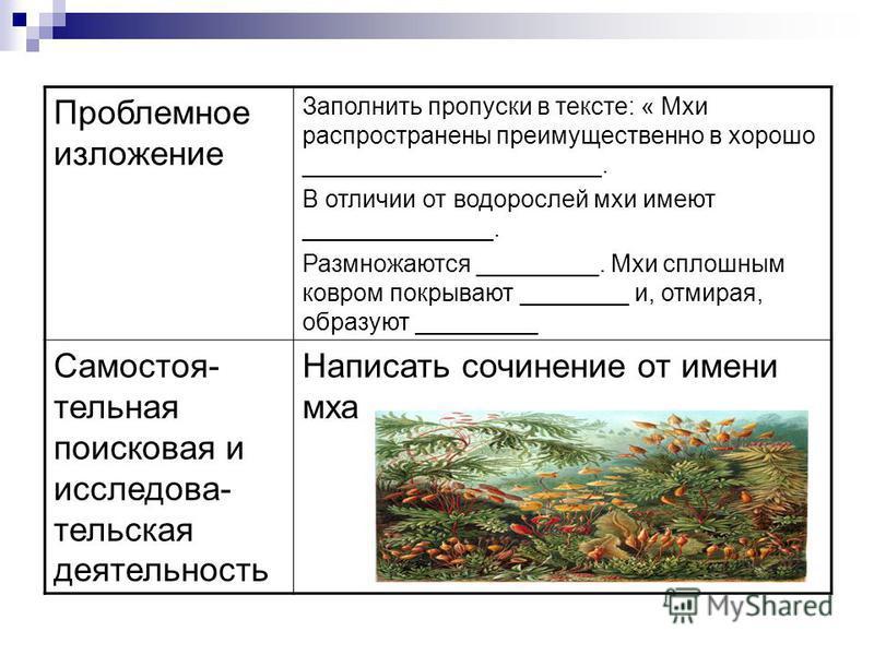 Проблемное изложение Заполнить пропуски в тексте: « Мхи распространены преимущественно в хорошо ______________________. В отличии от водорослей мхи имеют ______________. Размножаются _________. Мхи сплошным ковром покрывают ________ и, отмирая, образ