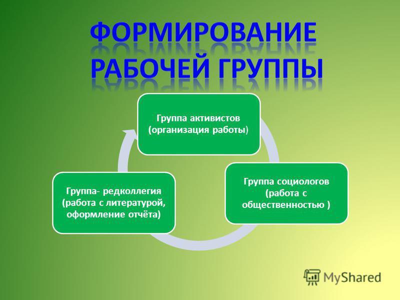 Группа активистов (организация работы) Группа социологов (работа с общественностью ) Группа- редколлегия (работа с литературой, оформление отчёта)