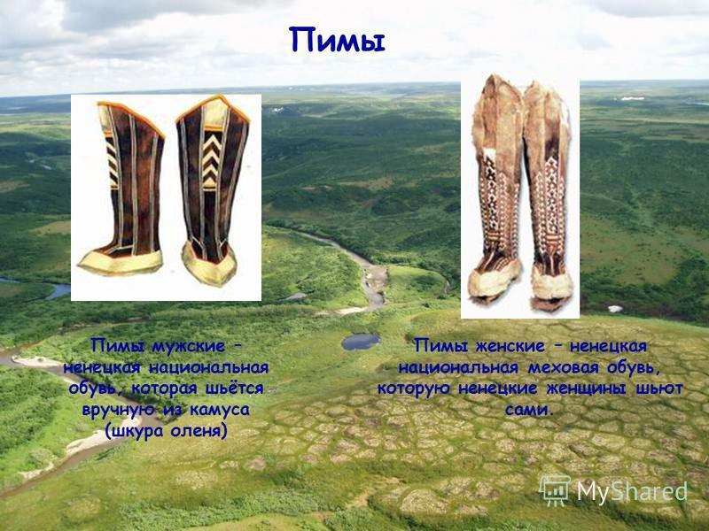 Пимы Пимы мужские – ненецкая национальная обувь, которая шьётся вручную из камуса (шкура оленя) Пимы женские – ненецкая национальная меховая обувь, которую ненецкие женщины шьют сами.