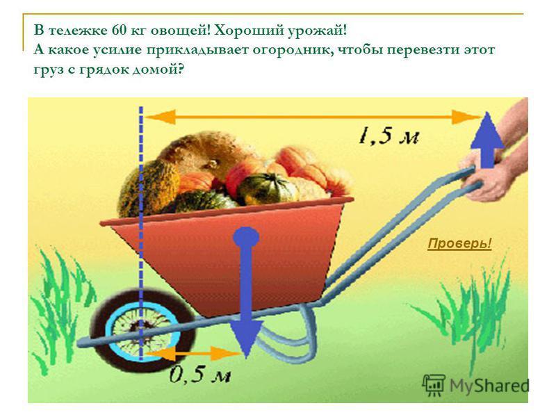 В тележке 60 кг овощей! Хороший урожай! А какое усилие прикладывает огородник, чтобы перевезти этот груз с грядок домой? Проверь!