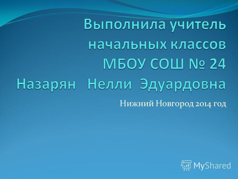 Нижний Новгород 2014 год