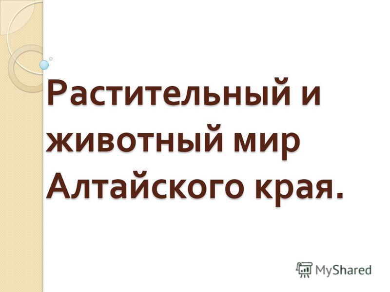 Растительный и животный мир Алтайского края.