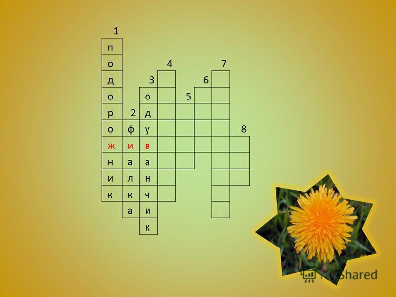 1 п о 47 д 3 6 о о 5 р 2 д о ф у 8 ж и в н а а и л н к к ч а и к