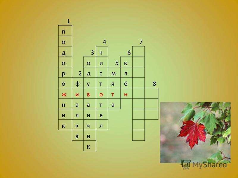 1 п о 47 д 3 ч 6 о о и 5 к р 2 д с м л о ф у т я ё 8 ж и в о т н н а а т а и л н е к к ч л а и к