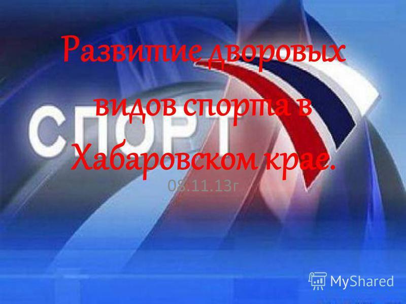 Развитие дворовых видов спорта в Хабаровском крае. 08.11.13 г