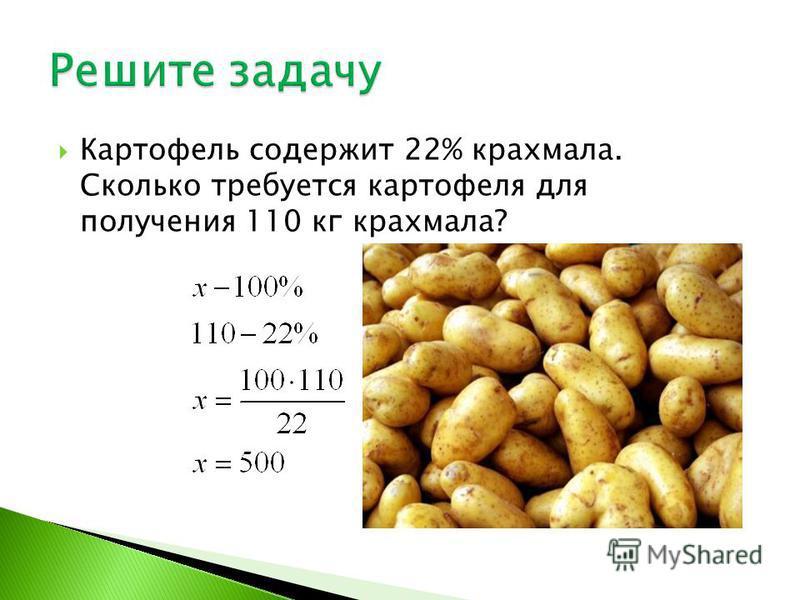 Картофель содержит 22% крахмала. Сколько требуется картофеля для получения 110 кг крахмала?