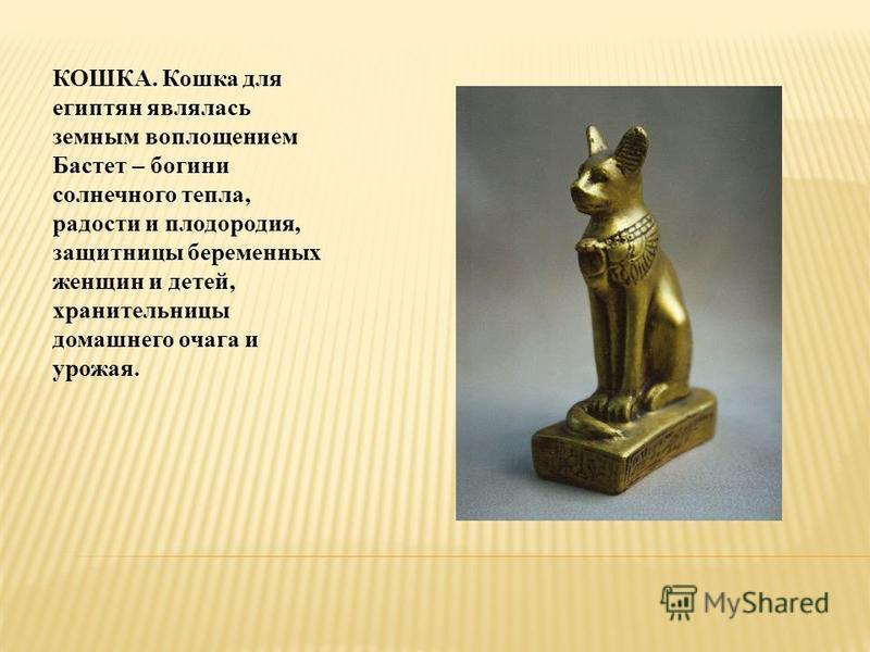 КОШКА. Кошка для египтян являлась земным воплощением Бастет – богини солнечного тепла, радости и плодородия, защитницы беременных женщин и детей, хранительницы домашнего очага и урожая.