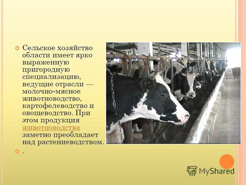 Сельское хозяйство области имеет ярко выраженную пригородную специализацию, ведущие отрасли молочно-мясное животноводство, картофелеводство и овощеводство. При этом продукция животноводства заметно преобладает над растениеводством. животноводства.