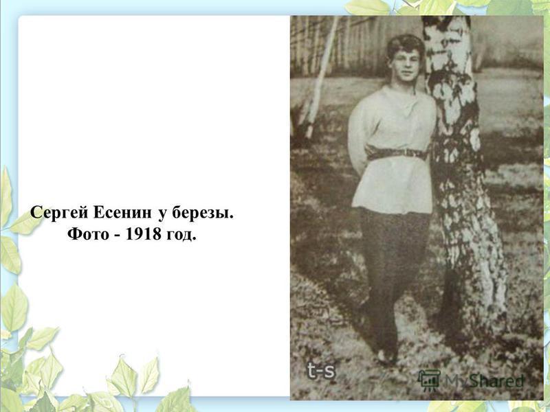 Сергей Есенин у березы. Фото - 1918 год.