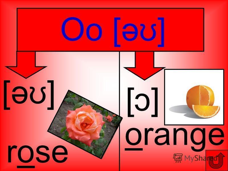 Oo [ә ʊ ] orange [ɔ] [ɔ] [ә ʊ ] rose