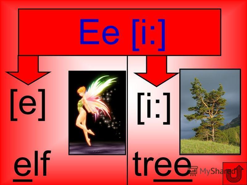Ee [i:] [e] elf [i:] tree