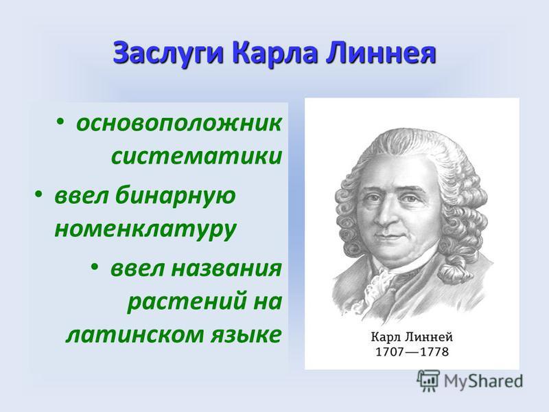 Заслуги Карла Линнея основоположник систематики ввел бинарную номенклатуру ввел названия растений на латинском языке