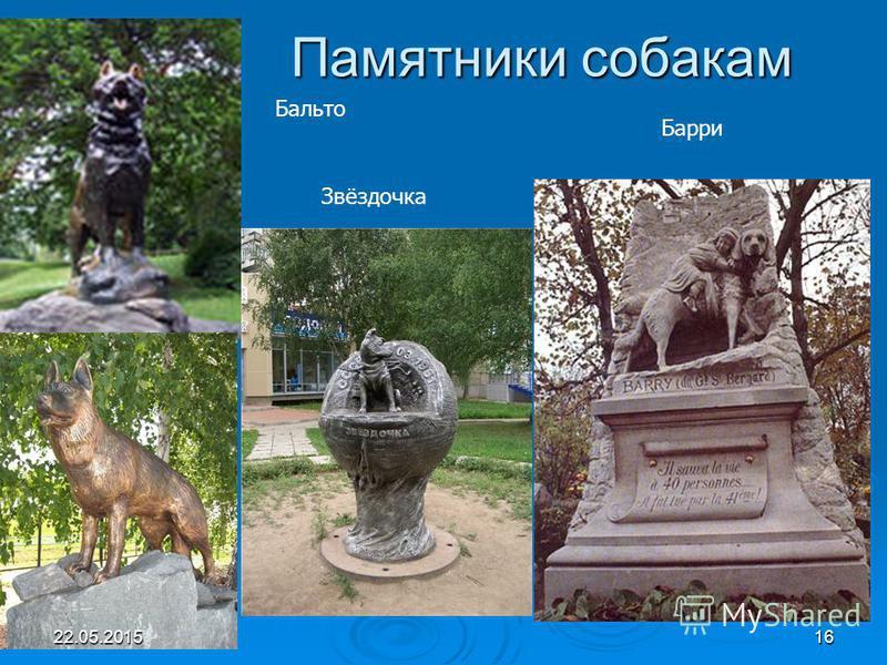 Памятники собакам Бальто Барри Звёздочка Бальто 22.05.201516