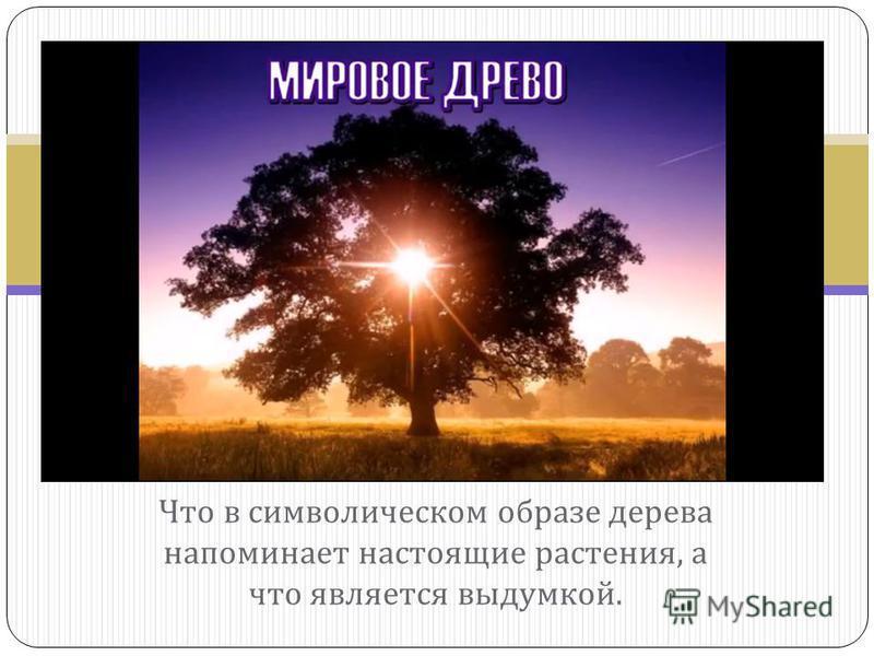 Что в символическом образе дерева напоминает настоящие растения, а что является выдумкой.
