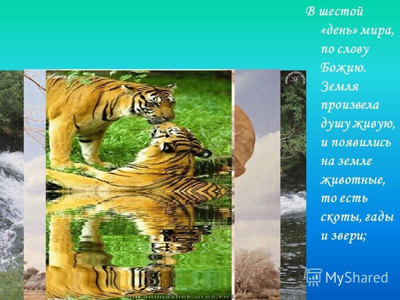 В шестой «день» мира, по слову Божию. Земля произвела душу живую, и появились на земле животные, то есть скоты, гады и звери;