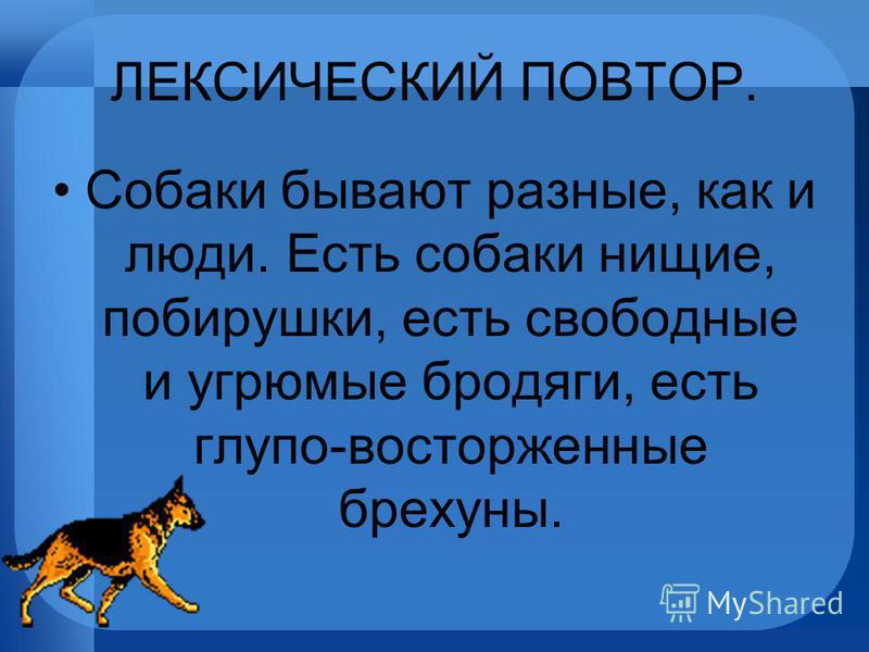 ЛЕКСИЧЕСКИЙ ПОВТОР. Собаки бывают разные, как и люди. Есть собаки нищие, побирушки, есть свободные и угрюмые бродяги, есть глупо-восторженные брехуны.
