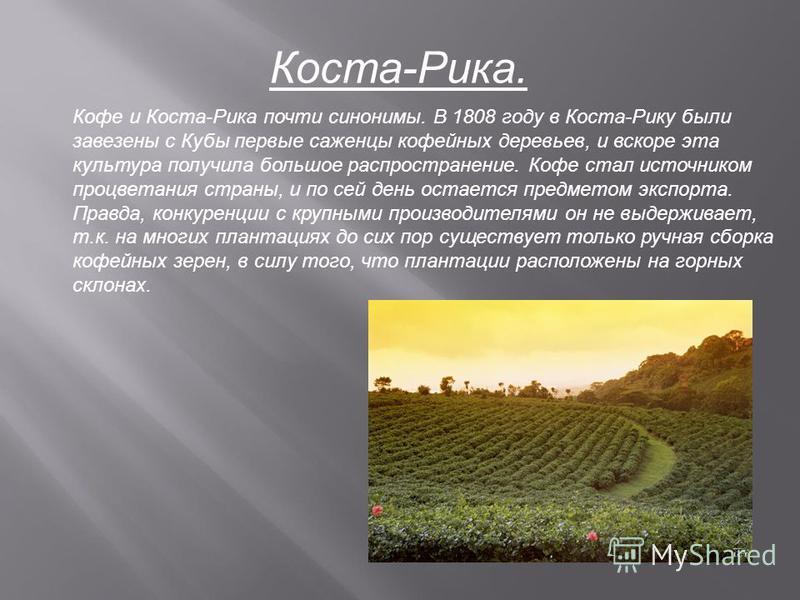 Коста-Рика. Кофе и Коста-Рика почти синонимы. В 1808 году в Коста-Рику были завезены с Кубы первые саженцы кофейных деревьев, и вскоре эта культура получила большое распространение. Кофе стал источником процветания страны, и по сей день остается пред