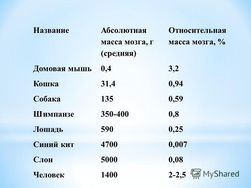 Название Абсолютная масса мозга, г (средняя) Относительная масса мозга, % Домовая мышь 0,43,2 Кошка 31,40,94 Собака 1350,59 Шимпанзе 350-4000,8 Лошадь 5900,25 Синий кит 47000,007 Слон 50000,08 Человек 14002-2,5