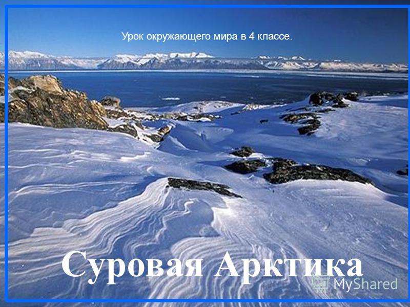 Суровая Арктика Урок окружающего мира в 4 классе.
