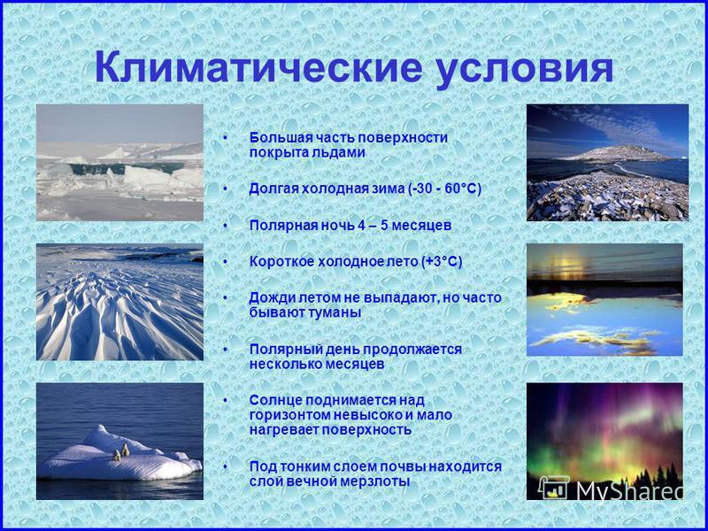 Климатические условия Большая часть поверхности покрыта льдами Долгая холодная зима (-30 - 60°C) Полярная ночь 4 – 5 месяцев Короткое холодное лето (+3°C) Дожди летом не выпадают, но часто бывают туманы Полярный день продолжается несколько месяцев Со