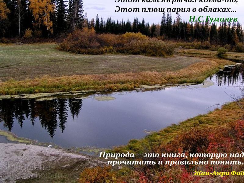 Природа – это книга, которую надо прочитать и правильно понять… Жан-Анри Фабр Этот камень рычал когда-то, Этот плющ парил в облаках… Н.С.Гумилев