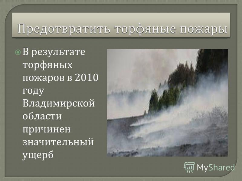 В результате торфяных пожаров в 2010 году Владимирской области причинен значительный ущерб