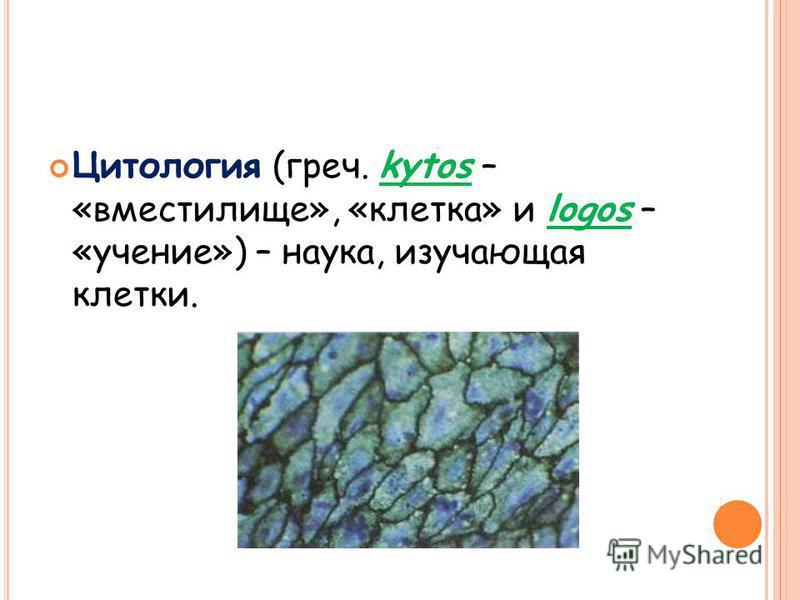 Цитология (греч. kytos – «вместилище», «клетка» и logos – «учение») – наука, изучающая клетки.
