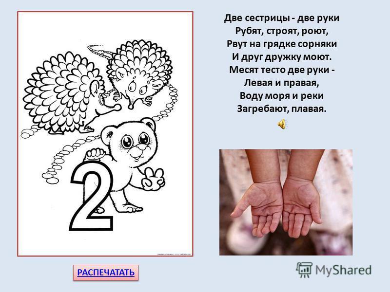 Цифра 2 собой гордится. Две руки – её сестрицы, Две ноги – её братишки. Знают цифру все детишки. РАСПЕЧАТАТЬ