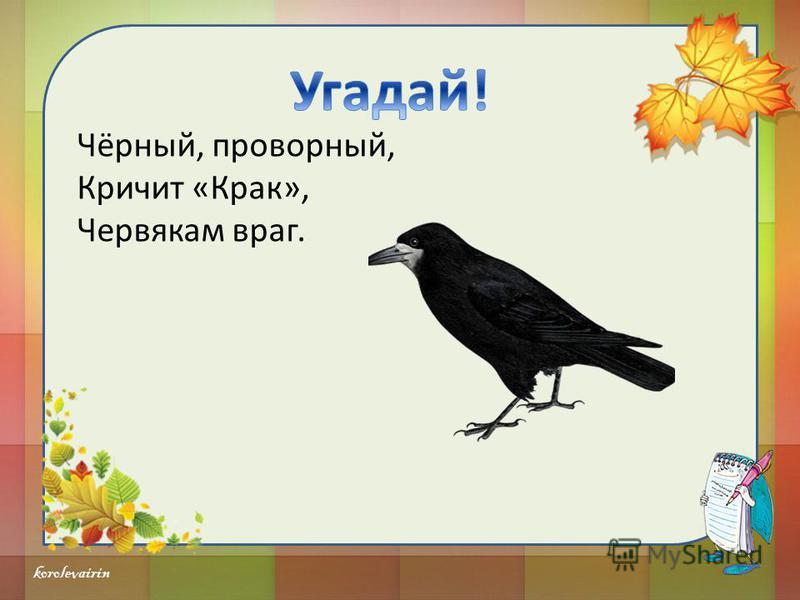 korolevairin Кто в составе каравана, Выгнув шею гордо, Вдаль идёт через барханы, Важный и двугорбый.